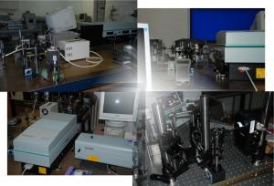 Laser spectroscopy group systems